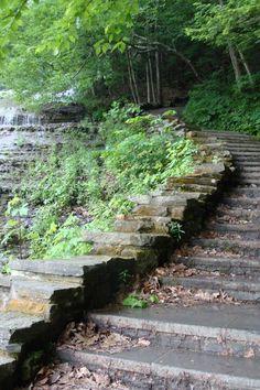 Buttermilk falls Ithaca, New york. For More Like This Follow My Facebook Page https://www.facebook.com/JodysGuideToHomesInTheFingerLakesRegion/