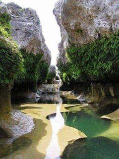 Google+ Abel Tasman National Park, New Zealand