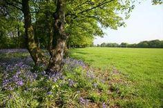 St. Helens - Sherdley Park