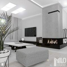 Elegancki salon w szarościach - zdjęcie od MILO studio