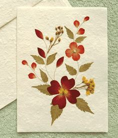 Tarjeta flores secas 1 Más