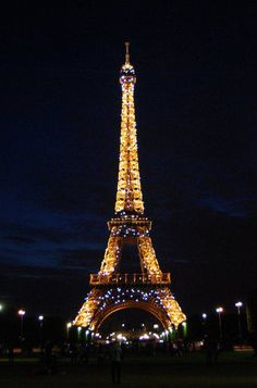 Eifel Tower - I have been to the second level of the tower. It was very cool. Weather kept me from going all the way to the top.  :(