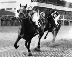 "Probably the most famous photo of the legendary racehorse Seabiscuit, beating ""the fastest horse in the world"" War Admiral at Pimlico, November 1st, 1938. Both horse and jockey George Woolf gaze right into the camera while all else is a blur."