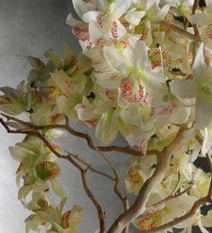 Flower Leis Cream & Yellow Silk Orchid Leis      $3.99 each / 6  for $2.59 each