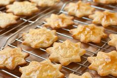 Light, crispy old-world German anise cookies from a family recipe dating back 100 years Need to investigate. German Christmas Cookies, German Cookies, Christmas Desserts, Christmas Baking, Christmas 2015, Christmas Ideas, Xmas, Anise Cookie Recipe, Anise Cookies