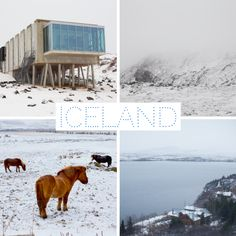 Kathy Patalsky's winter trip to Iceland with her husband
