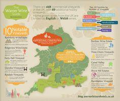 warner-wine-guide-infographic