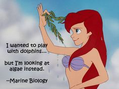 Haha! Pretty much!! Disney College Honest Major - Marine Biology - The Little Mermaid