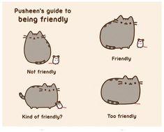 pusheen cat,