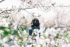 """rendermebreathless: """" 000054 (by yokolorin) """" Pastel Photography, Field Of Dreams, Spring Blooms, Japanese Culture, Spring Time, Wild Flowers, Cool Photos, The Outsiders, Around The Worlds"""