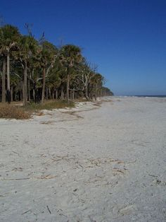 Image Result For Hunting Island State Park Weddings