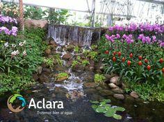 En las plantas de tratamiento de agua residual Aclara cuidamos bien al agua con la mejor tecnología. Para mas información visita http://aclara.mx