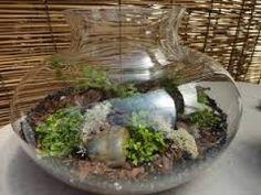 Resultado de imagem para miniature landscape terrarium