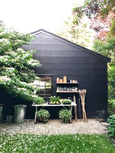 Backyard Potting Area behind Black Garage