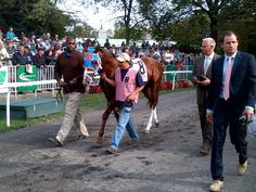 Twitter / Recent images by @NYRAnews
