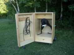 nice tack locker would be smart to have a little mini shed out when they graze you always wanna ride them in!