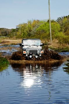 What Jeeps do ! * great photo! Re-Pinned by www.JeepDreamsUSA.com