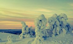 Last day of the year 2014. Levi Ski Resort in Finland