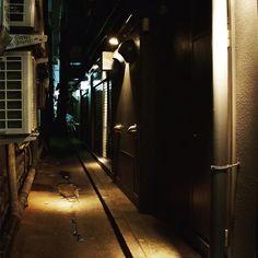 Dart, silent back alley in Kabukicho District in Shinjuku, Tokyo.