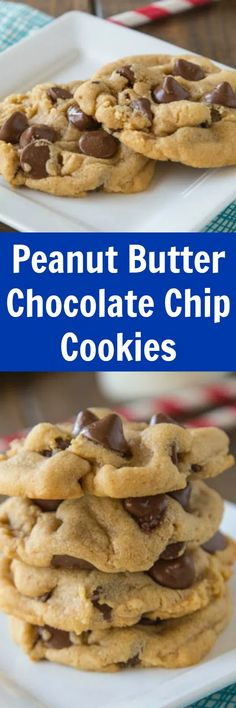 Peanut Butter Chocolate Chip Cookies are soft, fluffy, and full of chocolate and peanut butter! These are the thickest and softest cookies ever! Easy Gluten Free Desserts, Easy Cookie Recipes, Easy Desserts, Baking Recipes, Delicious Desserts, Dessert Recipes, Easy Dinner Recipes, Appetizer Recipes, Easy Recipes