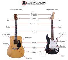 15 best educational guitar general images on pinterest rh pinterest com Classical Guitar Parts Diagram Fender Electric Guitar Parts Diagram
