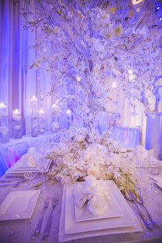 Enhanced Lighting working with Asiel Designs provided white chiffon drapery up lit with a soft purple.  Enhanced also used a soft wash on the table center piece to create this beautiful look.