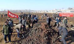 성, 중앙기관 정무원들 올해 첫 금요로동 진행-《조선의 오늘》