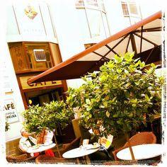 CAFE HAWELKA Travel, Photographers, Viajes, Destinations, Traveling, Trips