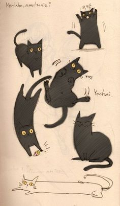 my kitty cat by - cats - Katzen I Love Cats, Crazy Cats, Cool Cats, Black Cat Art, Black Cats, Black Cat Drawing, Animal Gato, Cat Sketch, Cats And Kittens