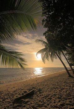 Beautiful moon lit beach