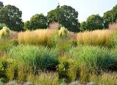 the_grass_garden_at_kew_on_a_sunny_afternoon_by_aegiandyad-d6ojnug.jpg…