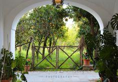 Orange and Lemon Farm Lemon Farm, Oranges And Lemons, Arch, Outdoor Structures, World, Garden, Photography, Longbow, Garten