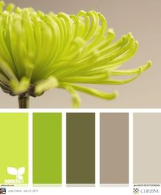 Color Palettes, swap out the lime green for a sage green