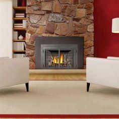 Napoleon Direct Vent Gas Fireplace Insert with Radiant Ironwood Log Set - NED140