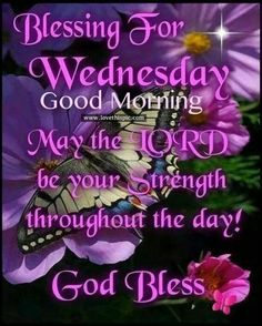 Wednesday Morning Images, Wednesday Morning Greetings, Blessed Wednesday, Happy Wednesday Quotes, Good Morning Wednesday, Good Morning Images, Good Morning Quotes, Wednesday Prayer, Wednesday Wishes
