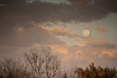 Super Moon Photography: How to Shoot the Moon