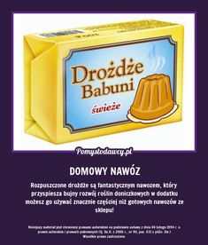PROSTY TRIK NA PIĘKNE KWIATY DONICZKOWE O KTÓRYM WIELE OSÓB NIE WIE! Garden Deco, Herb Garden, Garden Table, Diy Home Cleaning, Cleaning Hacks, Organic Gardening, Gardening Tips, Gardening Gloves, Kitchen Organisation