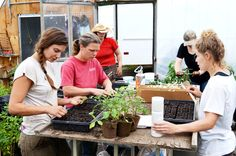 Female farmers play critical role in Vermont's Ag economy   Vermont Business Magazine