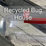 These simple recycled bug houses are perfect for observing bugs. They are easy to build and use materials that you have around the house.