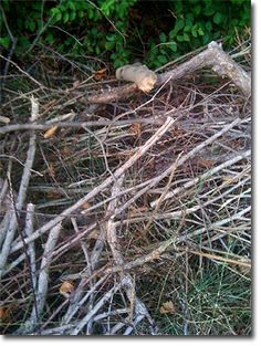 Wooden debris will decompose faster, (and be transformed into a resource) when…