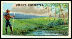 Cigarette Card ~ Boy Scouts, Weather Signs | Flickr - Photo Sharing!