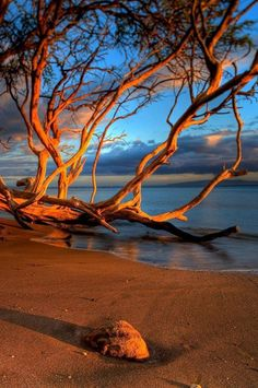 Sunset in Australia.