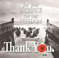 Thank You. Veterans Day © Steve Nease
