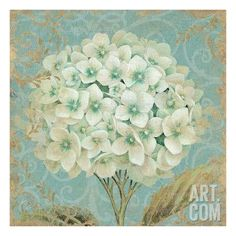 Hydrangea Square II Giclee Print by Daphne Brissonnet at Art.com