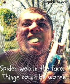 Spiderweb silliness and other silly photos.