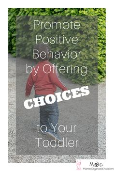 Why offer choices  - Avoid Power struggles: Anything you can do to avoid a power struggle with your toddler (which so often results in a tantrum) is going to be beneficial for everyone. Toddlers are still learning how to control their emotions. Power struggles create situations where everyone gets frustrated (child and parents), and they rarely resolve seamlessly. In a power struggle, the desired behavior is typically not the outcome that is gained, and the parent ends up punishing or…