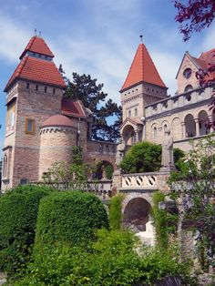 Visit Castle of Jenő Bory, Székesfehérvár Castle Ruins, Medieval Castle, Sweet Potatoes For Dogs, Natural Dog Food, Tower House, Treatment Rooms, Beautiful Castles, Healthy Dog Treats, Budapest Hungary