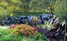 A summer scene at Cantigny Gardens, Wheaton, Illinois