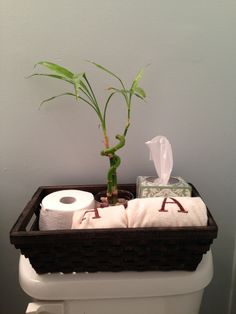 Here is another idea for storage above toilet - this basket would look good against the seafoam green too.