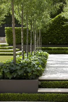 Peter Fudge creates gardens that connect in deep and meaningful ways. Peter has been designing beautiful gardens since Every garden design has… Contemporary Garden Design, Landscape Design, Modern Landscaping, Outdoor Landscaping, Back Gardens, Small Gardens, Formal Gardens, Outdoor Gardens, Minimalist Garden
